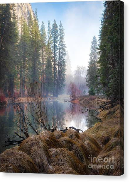 Morning On The Merced Canvas Print