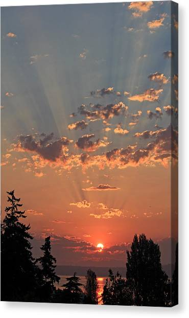 Morning Rays Canvas Print