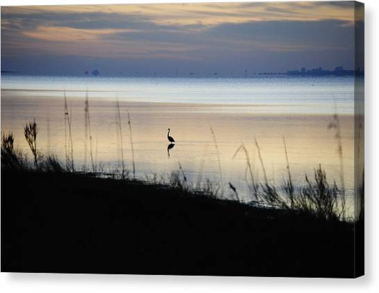 Morning Solitude Canvas Print by Michele Kaiser