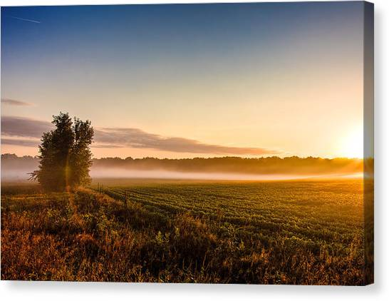 Morning Sun Over Farmland Canvas Print