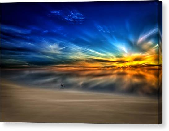 Morning Sunrise With A Seagull Canvas Print