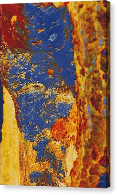 Mortal Bleu Flambe Canvas Print