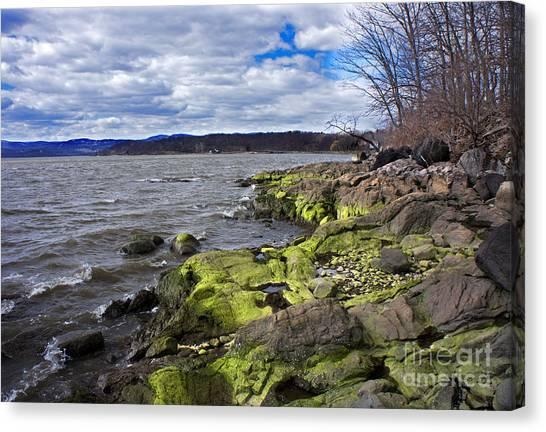 Moss Along The Hudson River Canvas Print