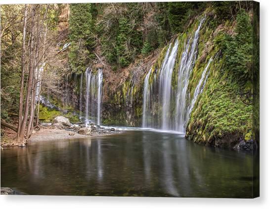 Mossbrae Falls Canvas Print
