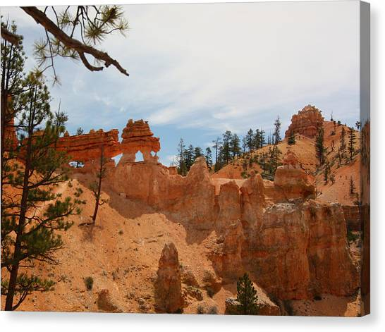 Mossey Creek Trail Arches Canvas Print