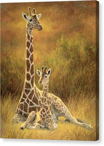 Giraffes Canvas Print - Mother And Son by Lucie Bilodeau