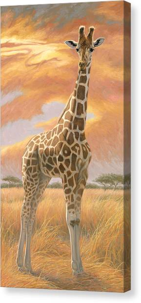 Mother Giraffe Canvas Print
