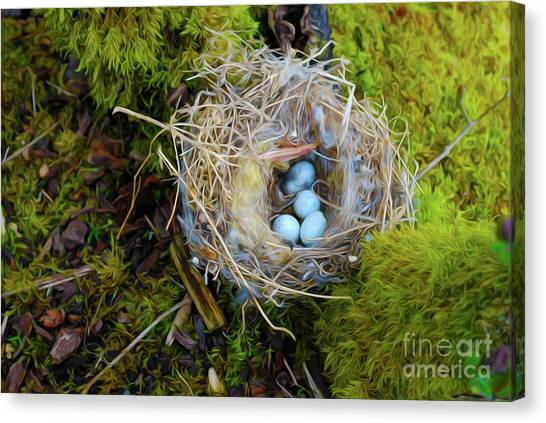 Easter Eggs Canvas Print - Mother Of Four by Laura Brightwood
