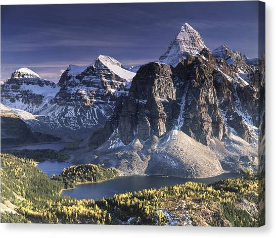 Mount Assiniboine In The Fall Canvas Print by Richard Berry