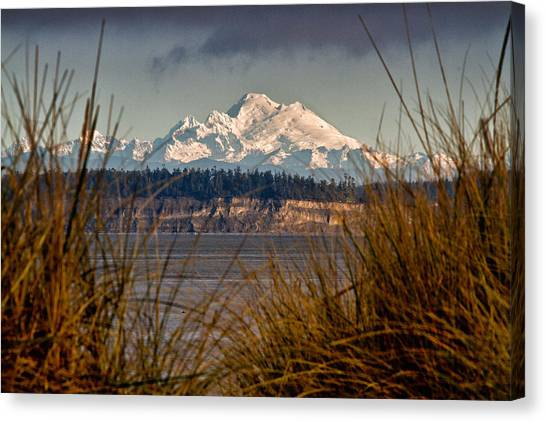 Mount Baker From Port Townsend Canvas Print