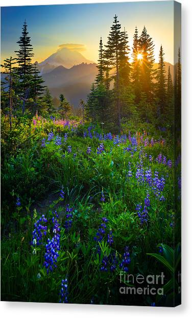 Sunsets Canvas Print - Mount Rainier Sunburst by Inge Johnsson