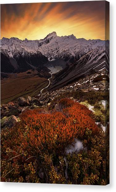 Mountain Sunsets Canvas Print - Mount Sefton by Yan Zhang