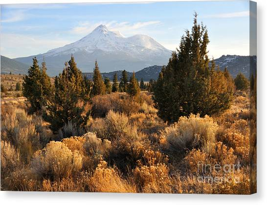 Mount Shasta In The Fall  Canvas Print