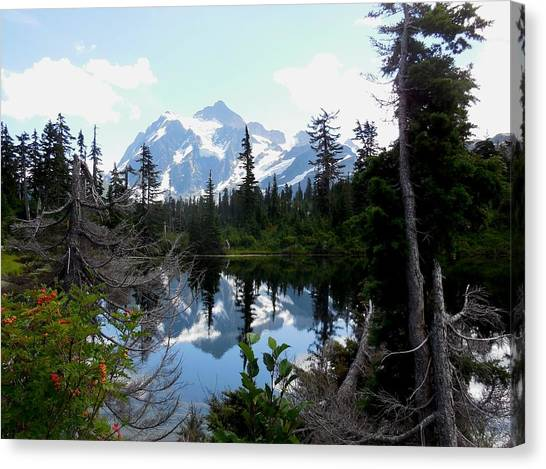 Mount Shuksan Reflection Canvas Print