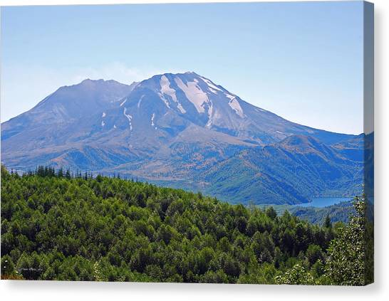 Mount St. Helens And Castle Lake In August Canvas Print