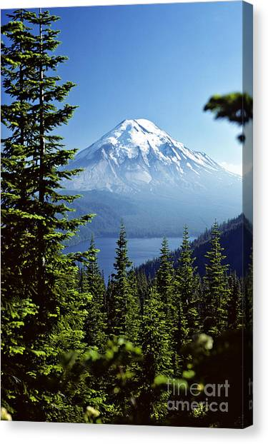 Mount St. Helens Canvas Print - Mount St. Helens And Spirit Lake by Thomas & Pat Leeson