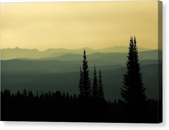Yellowstone National Park Canvas Print - Mount Washburn Mist by Todd Klassy