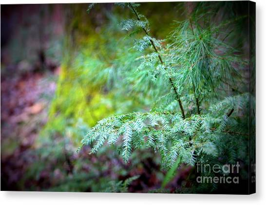 Mountain Fauna Canvas Print