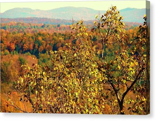 Mountain Foliage Series 012 Canvas Print