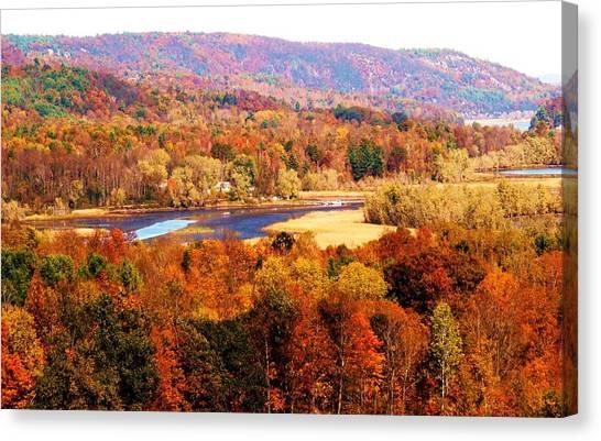 Mountain Foliage Series 022 Canvas Print