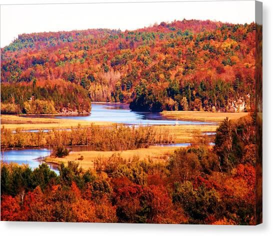 Mountain Foliage Series 029 Canvas Print