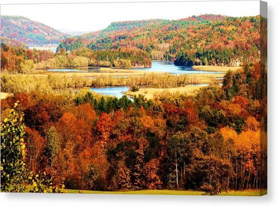 Mountain Foliage Series 033 Canvas Print