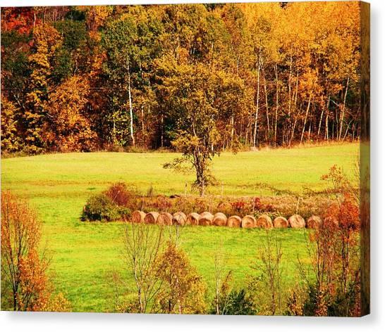 Mountain Foliage Series 038 Canvas Print
