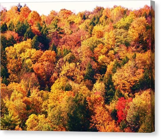 Mountain Foliage Series 054 Canvas Print
