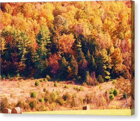 Mountain Foliage Series 057 Canvas Print