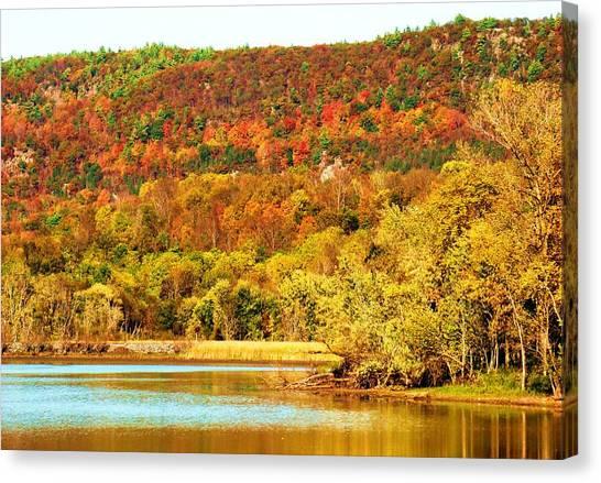 Mountain Foliage Series 067 Canvas Print