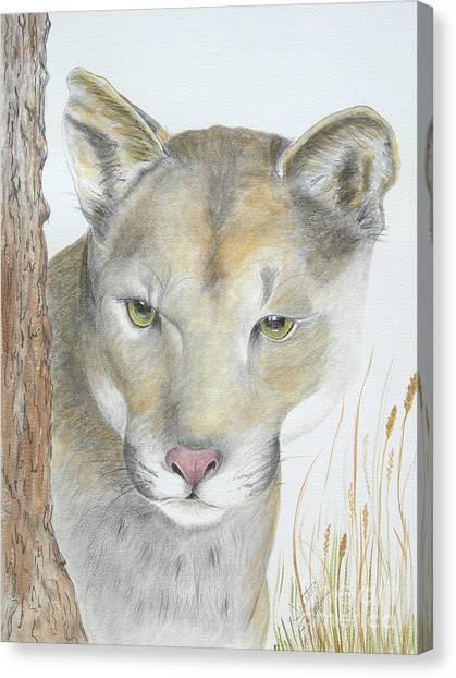 Mountain Hunter Canvas Print