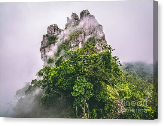 Mountain In The Cloud And Fog Canvas Print by Vasek Rak