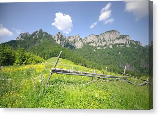 Mountain Landscape  Canvas Print by Ioan Panaite