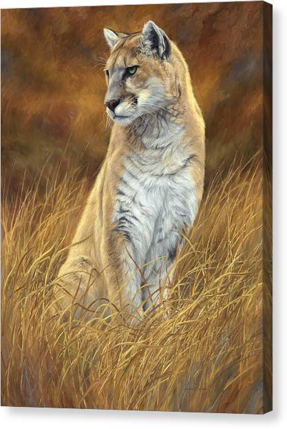 Mountain Lion Canvas Print