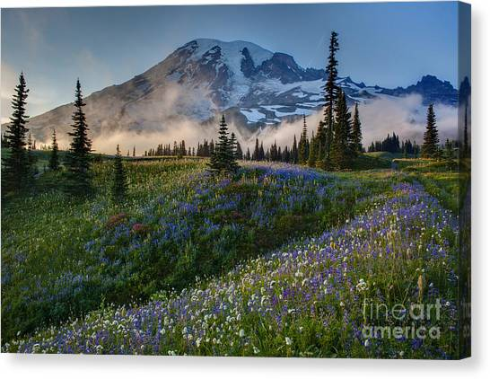 Washington Nationals Canvas Print - Mountain Meadow Serenity by Mike Reid