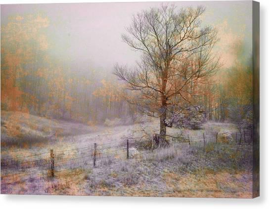 Mountain Mist II Canvas Print