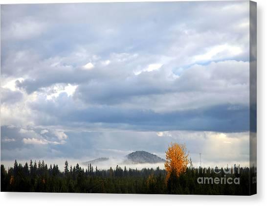 302p Mountain Mist Canvas Print
