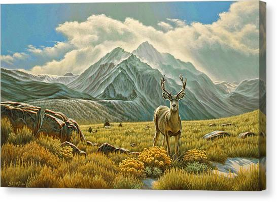 Eastern Canvas Print - Mountain Muley by Paul Krapf