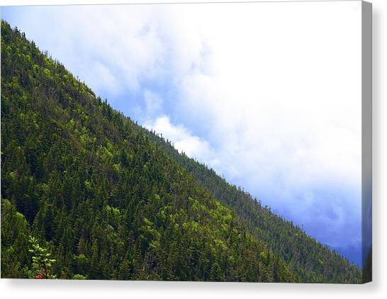 Mountain Side Canvas Print