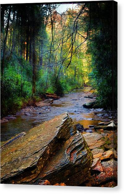 Mountain Stream N.c. Canvas Print