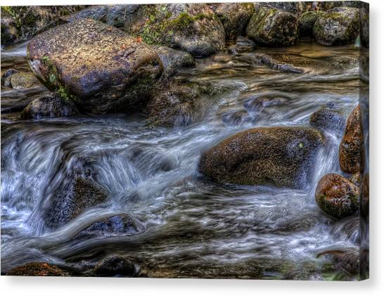Mountain Stream On The Rocks Canvas Print