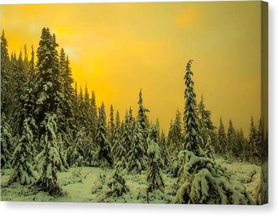 Treeline Canvas Print - Mountain Sunrise by Ryan McGinnis