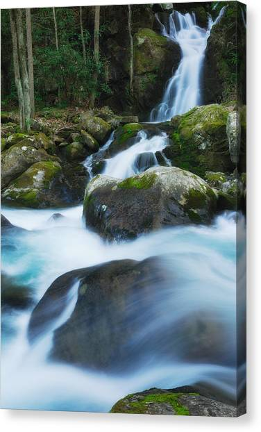 Mouse Creek Falls In Colour Canvas Print