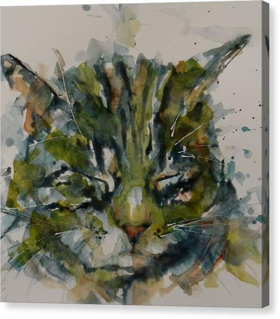 Tabby Canvas Print - Mr Bojangles by Paul Lovering
