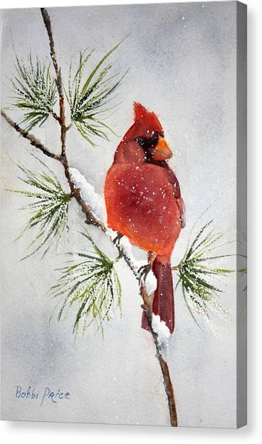 Mr Cardinal Canvas Print by Bobbi Price
