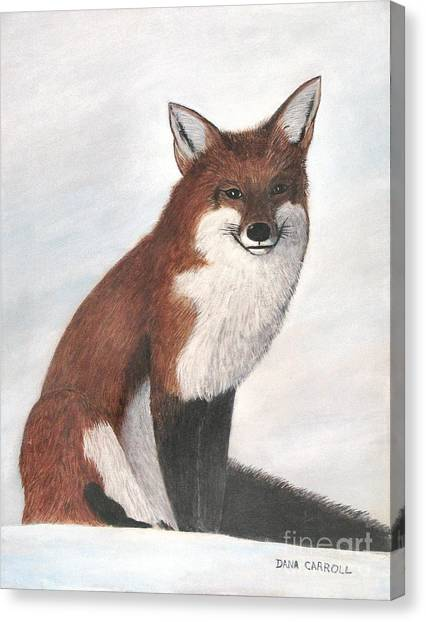 Mr Fox Canvas Print by Dana Carroll