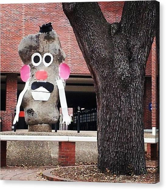 University Of Florida Canvas Print - Mr. Potato Head by Lynn Palmer