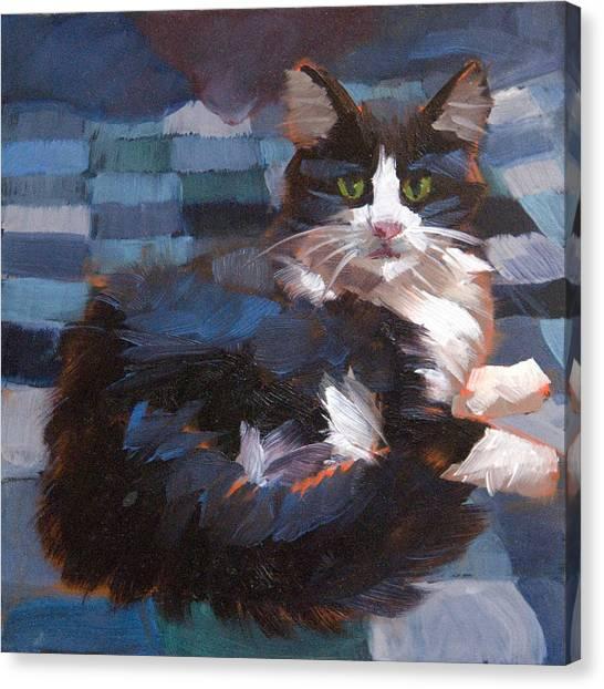 Tuxedo Canvas Print - Mr. Tuxedo by Alice Leggett