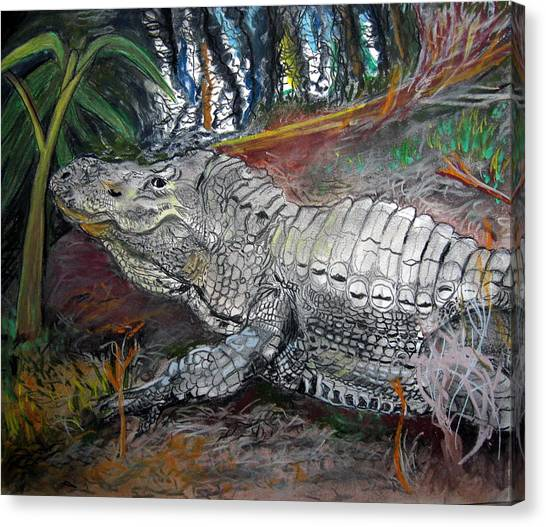 Mr.alligator Canvas Print