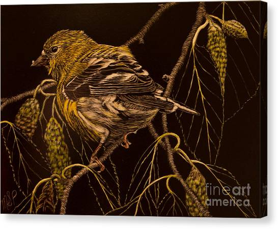 Mrs Goldfinch Canvas Print